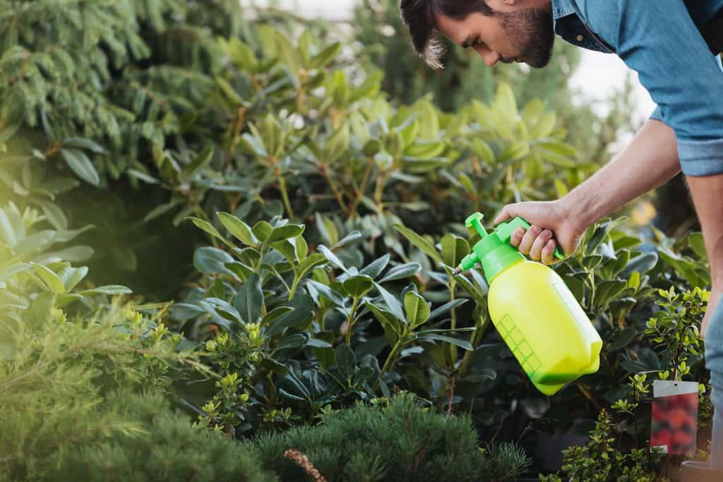 Garden Sprayer Reviews