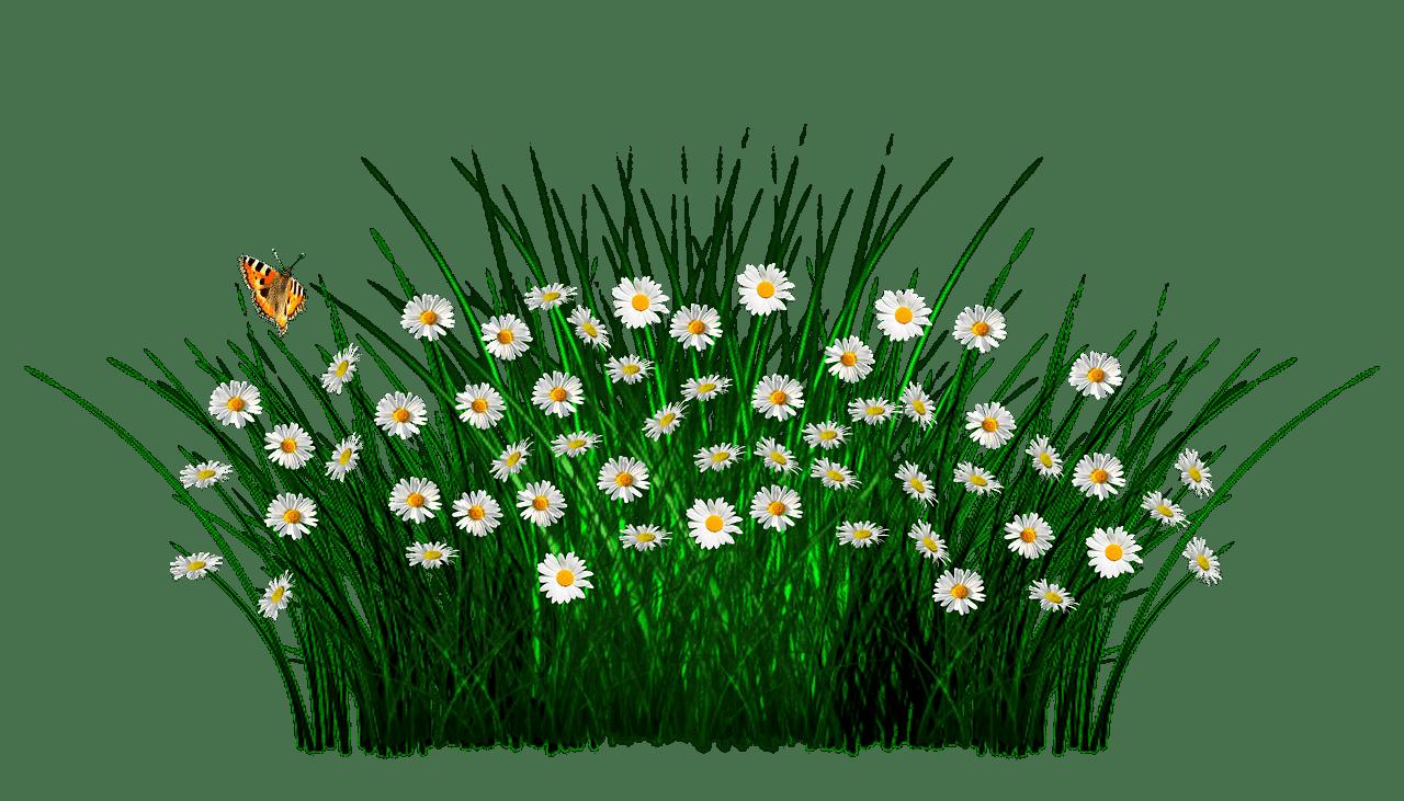 how to make garden in little alchemy